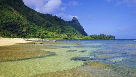 Tunnels Beach Offers Best Snorkeling on Kauai