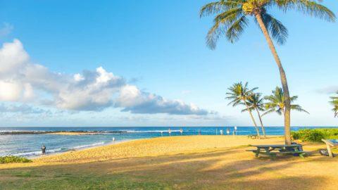 71467922 - man enjoying in his bicycle at poipu beach, kauai island, hawaii