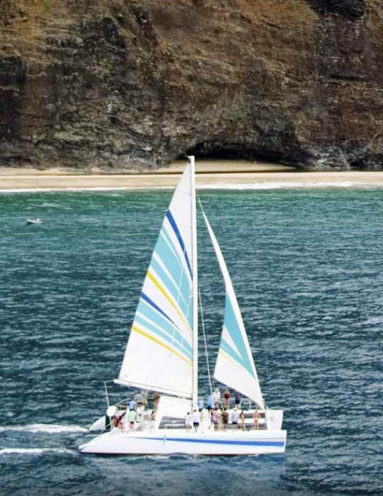 Parrish Kauai Activities